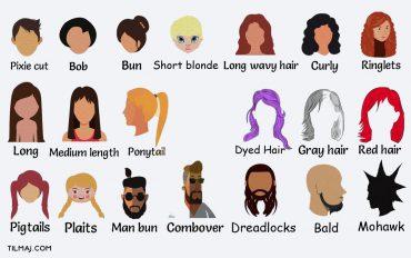 انواع مدل مو به انگلیسی